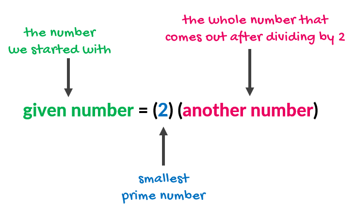 the given number is equal to 2 times another number; where the given number is the number we start with, two (2) is the smallest prime number, and another number is the whole number that comes out after dividing by 2. we can also write this as given number = (2)(another number).